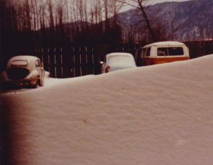 VWs in the snow